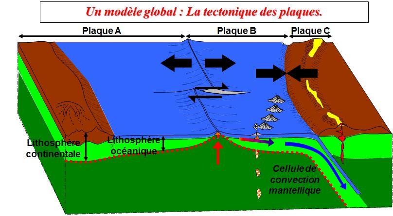 Chapitre 7 le renouvellement de la lithosph re oc anique for Chambre magmatique